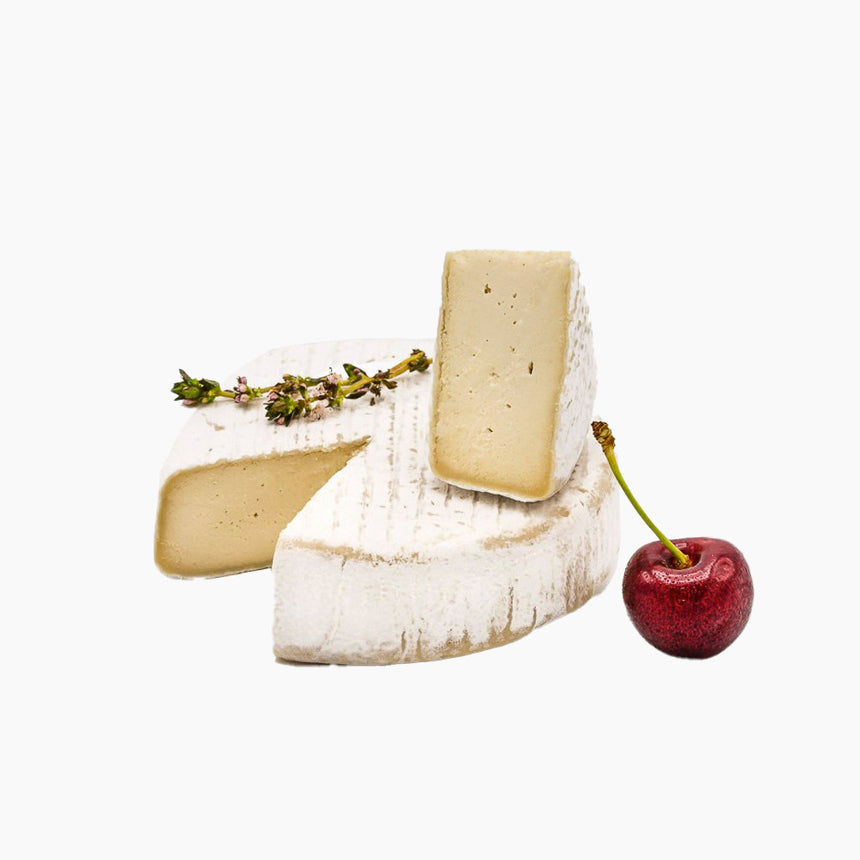 Caeruleus - The Nutty Cheeze