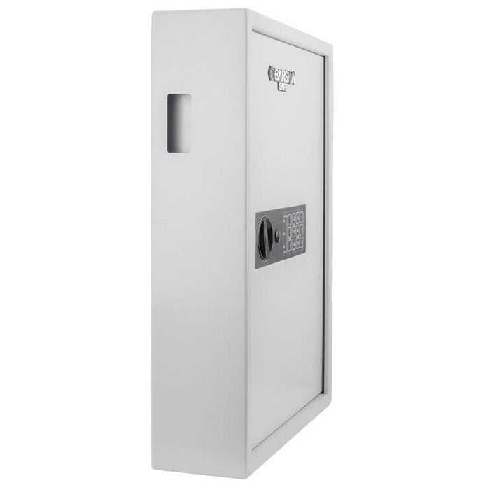 Barska 100 Keys Keypad Wall Key Safe, White AX13262