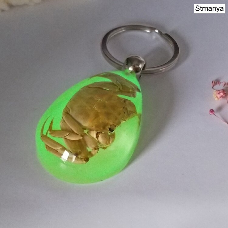 Luminous Scorpion Keychain - New Luminous Product Real Crab and Scorpion  Key Chain bag Car key ring #17067