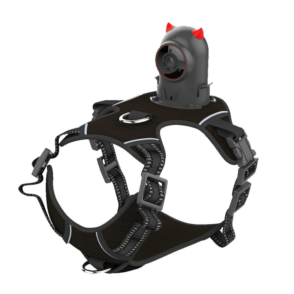 Pet Video Sports Camera Audio Video Kit with Chest Strap