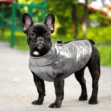 Load image into Gallery viewer, Light weight, Waterproof Dog Vest Jacket for Cool Weather Walks