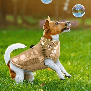 Light weight, Waterproof Dog Vest Jacket for Cool Weather Walks