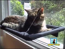 Load and play video in Gallery viewer, Cat balcony/hammock for Cats' Sunny Seat
