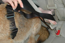 Load image into Gallery viewer, CarSafe Dog Travel Harness for Seatbelt Safety