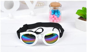 Dog Sunglasses/Goggles are UV protected Come in Multiple Colors