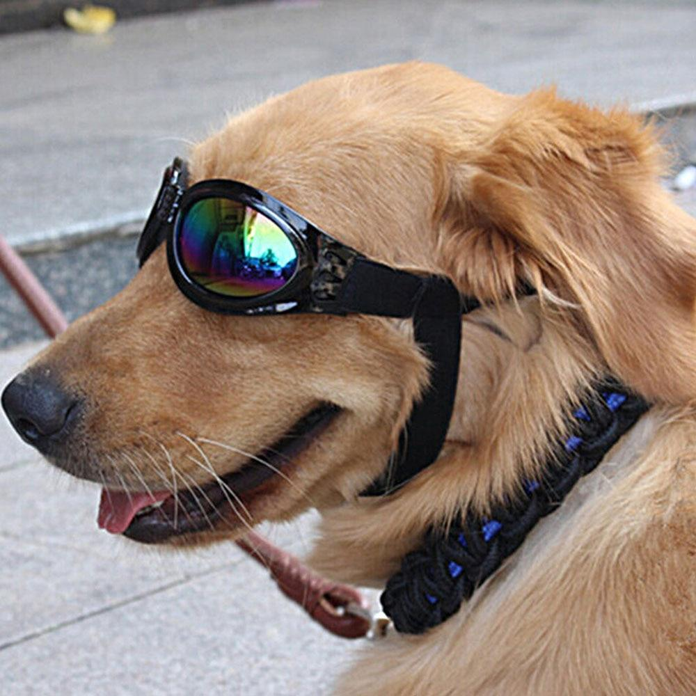 Adjustable UV Black Sunglasses for your Dog. Fold-able and Sun-resistant