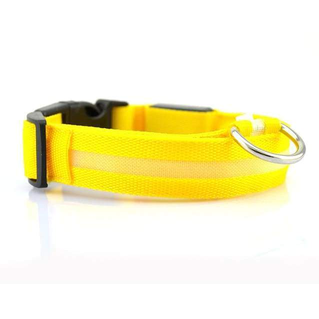 Neon LED Glow in the Dark Collars for all Size Cats and Dogs