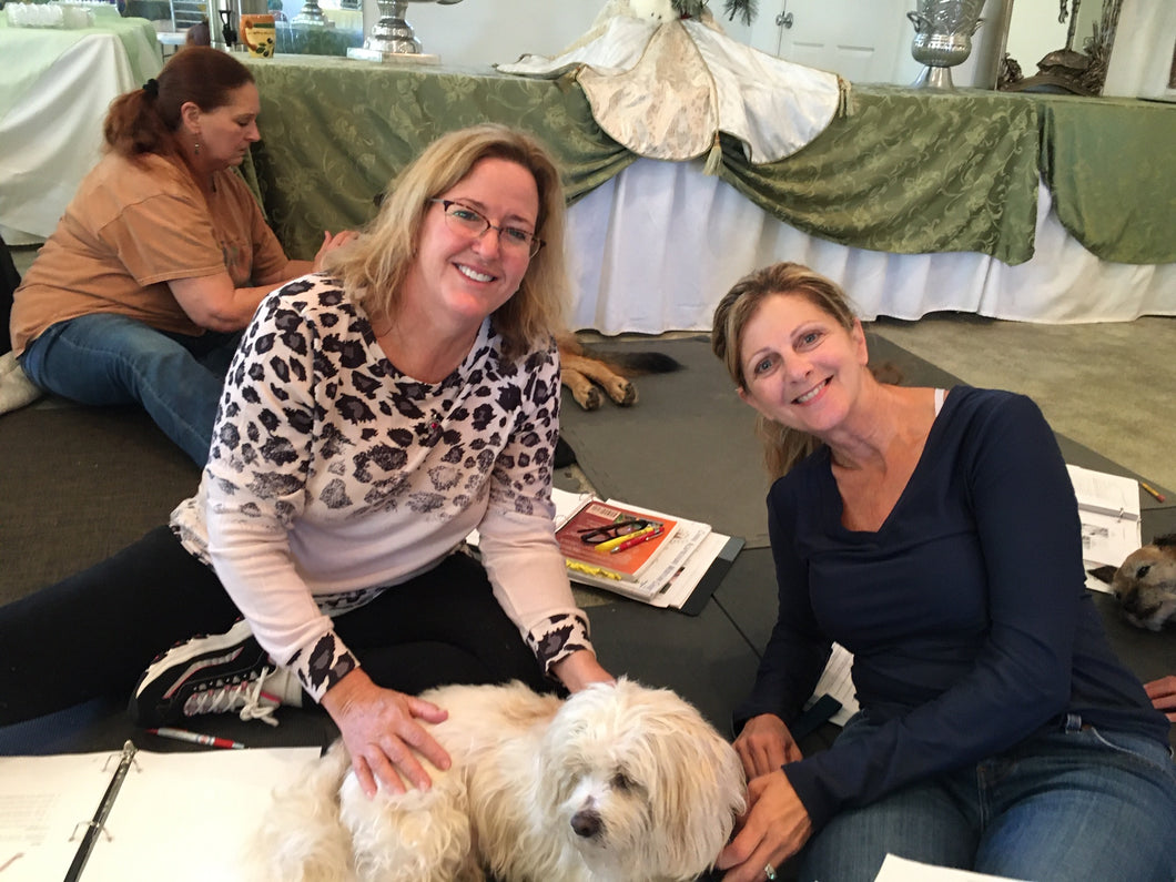 Introduction Small Animal Acupressure Hands On Course (2 Day)- June 26-27, 2021, Happy Dog Ranch, Littleton, CO