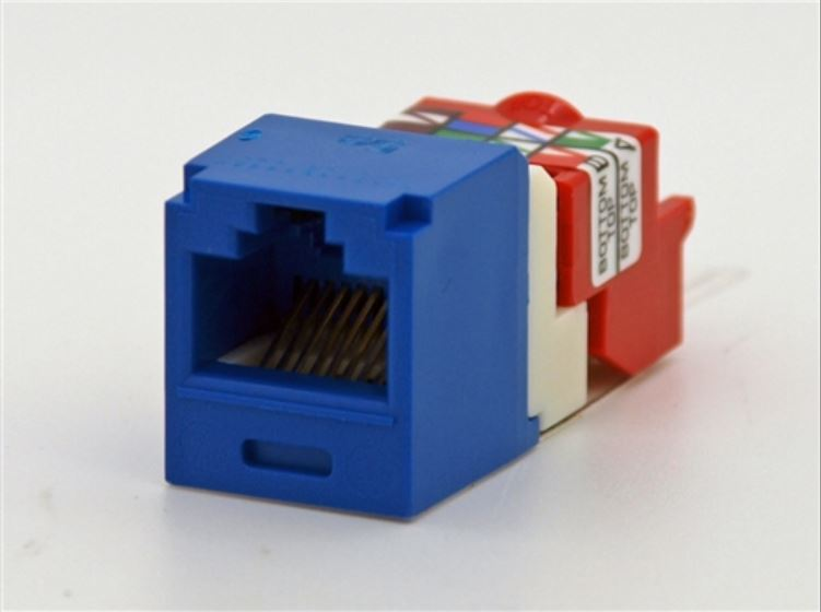 CJ5E88TBU, Panduit Mini-Com Modular Jack: TX5e, CAT5e, RJ45 - Blue (MOQ: 1; Increment of 1)
