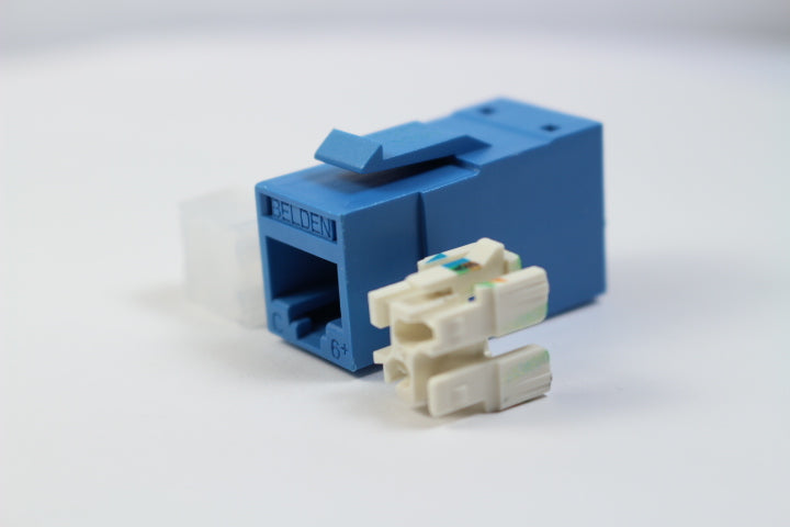 Belden RV6MJKUBL-B24 CAT6 RJ45 REVConnect/KeyConnect Jack Module, Blue, 24 Pack