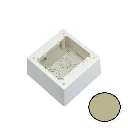 Panduit JBP2DEI Mini-Com Dual Gang, Deep, Power Rated Junction Box, Electric Ivory