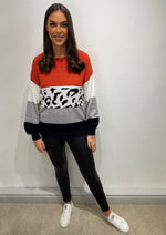 Load image into Gallery viewer, Rita Rust Animal Print Jumper