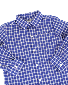 Blue Windowpane Collared Shirt