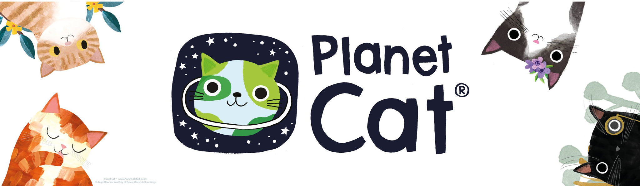 New! | Planet Cat