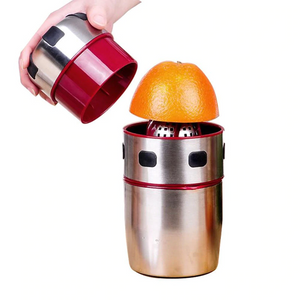 Stainless Steel Portable Juicer - Tazooly