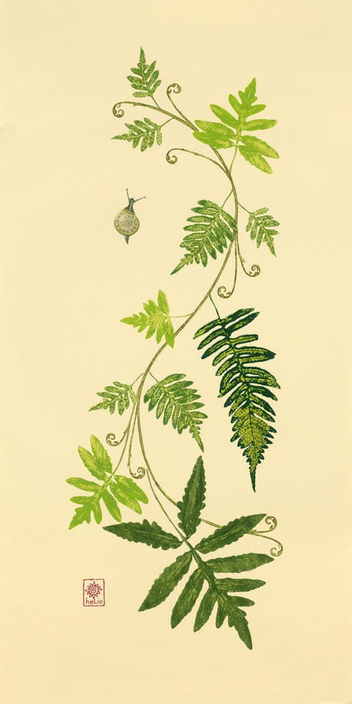 Fanciful Fern and Fiddlehead Vine Print