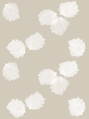 Fabric: Sea fans - white on sand