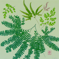 Magical Maidenhair Ferns
