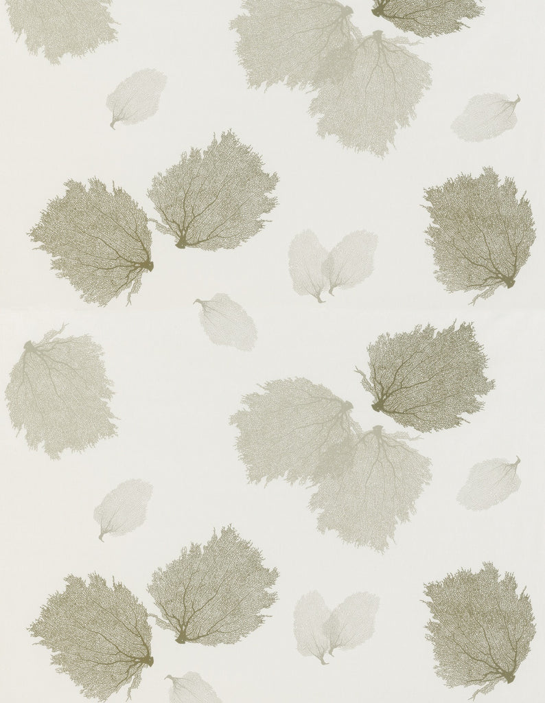 Sea Fans with Small Sea Fan Accent Print Fabric