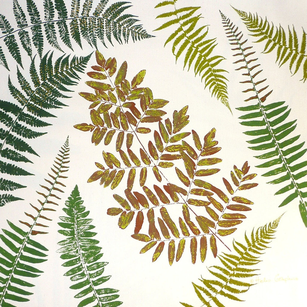 Ferns, ferns, ferns! Pillow Cover
