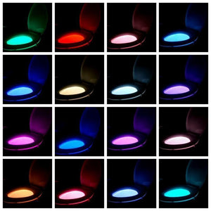 LED Motion Sensor Night Light - Motion Activated Toilet Bowl Lighting