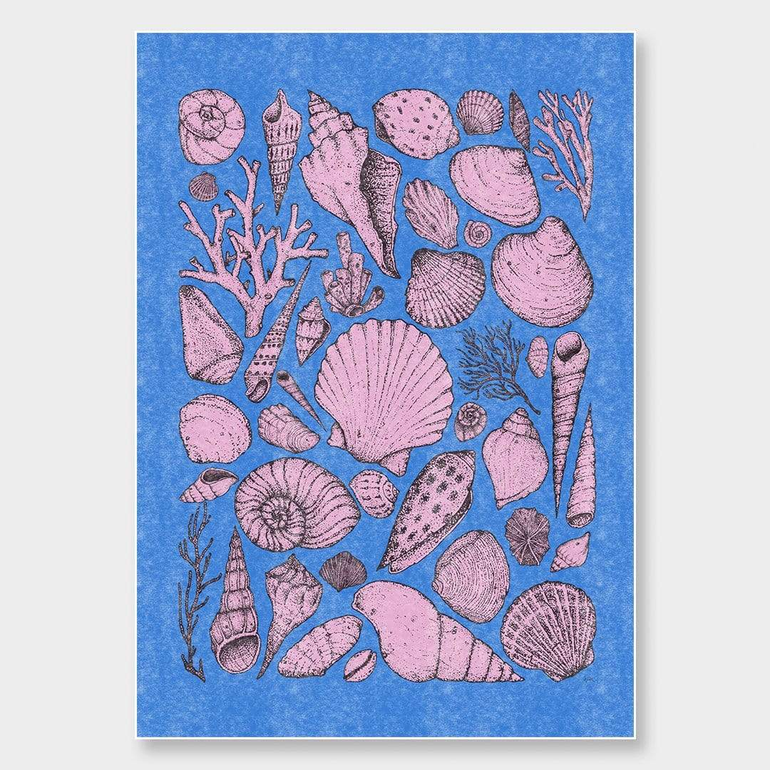 Shells Blue Art Print by Nathan Miller