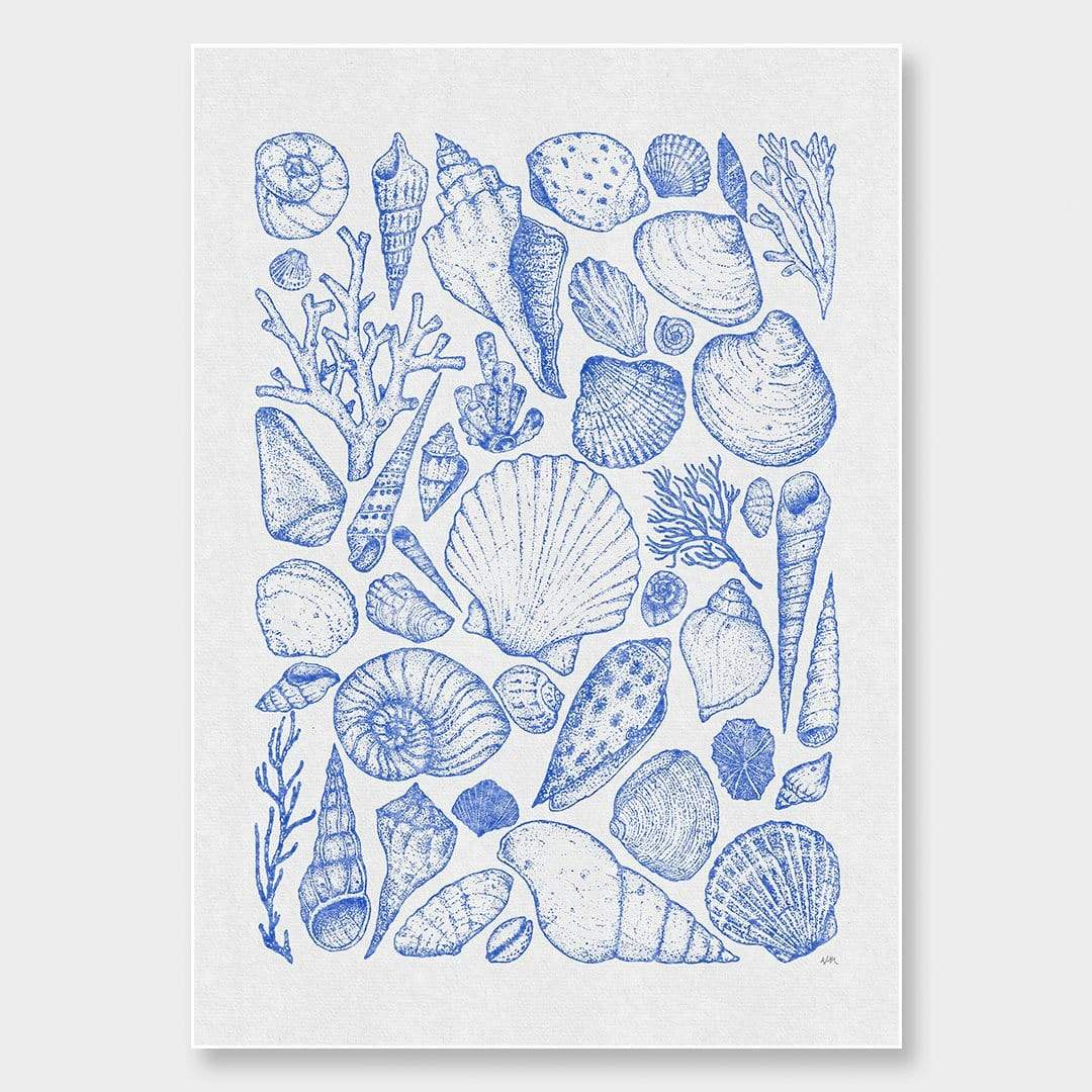 Shells Grey Art Print by Nathan Miller