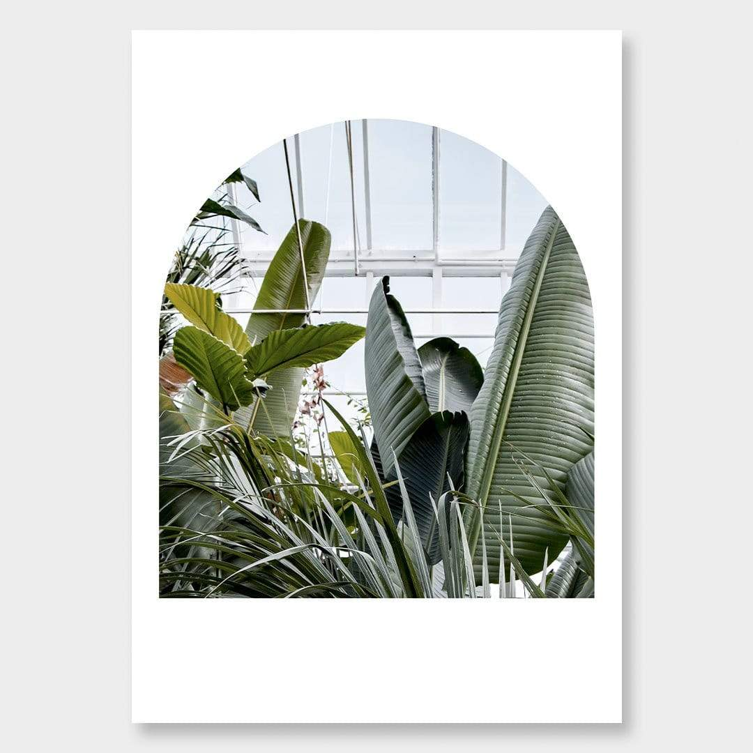 The Tropical House Photographic Print by Amy Wybrow