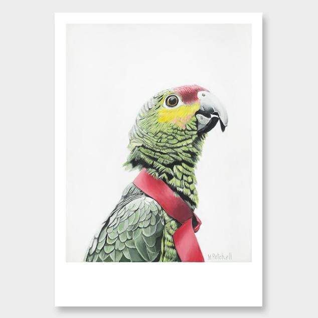 Algernon Parrot Art Print by Margaret Petchell