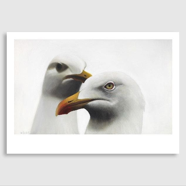 Barrett & Lorenzo Seagull Art Print by Margaret Petchell