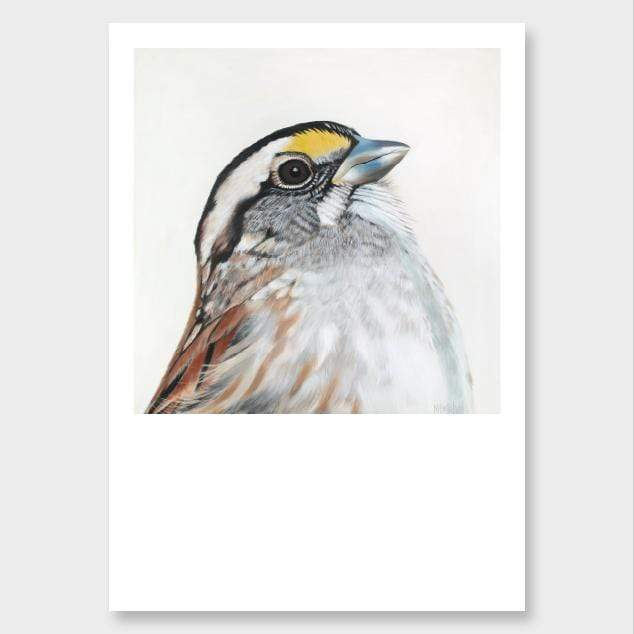 Bijou Sparrow Art Print by Margaret Petchell