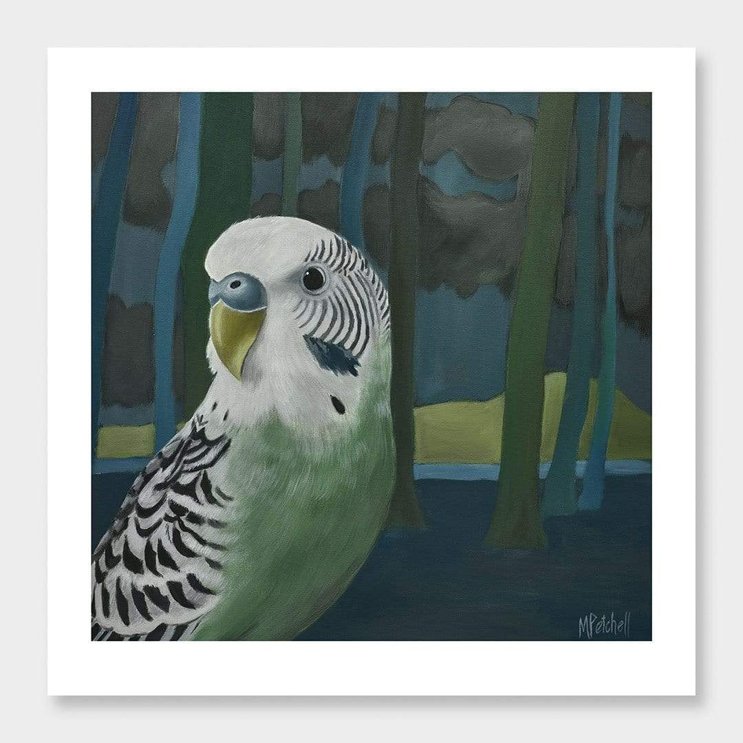 Ethyl Budgie Art Print by Margaret Petchell