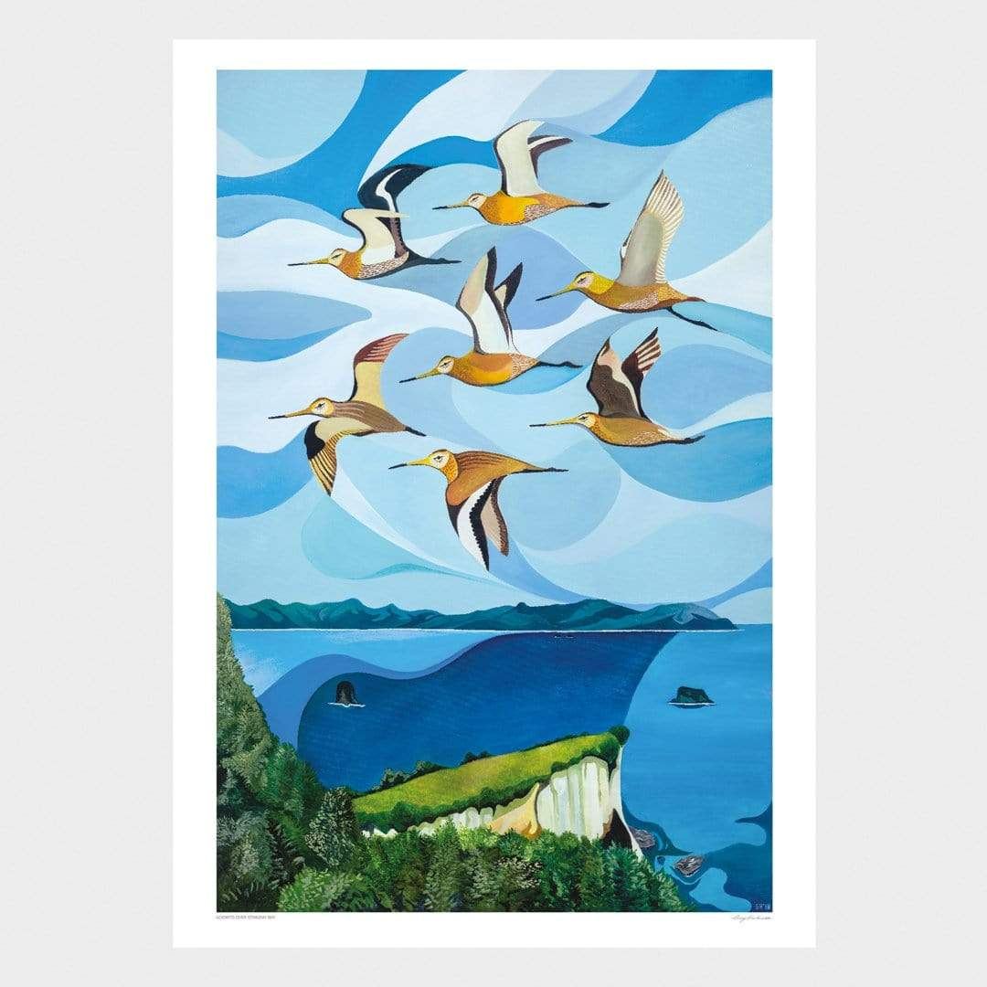 Godwit Over Stingray Bay Art Print by Guy Harkness