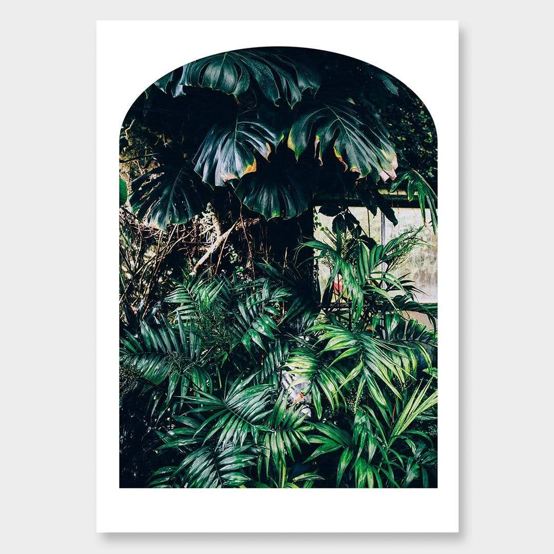 Green and Gold No3 Photographic Print by Amy Wybrow