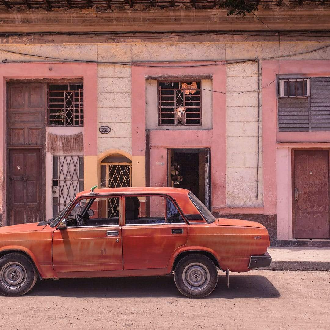 Havana #5 Watch Dog Photographic Print by The Virtue