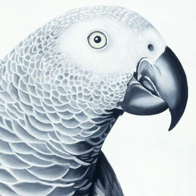 Hector African Grey Parrot Art Print by Margaret Petchell