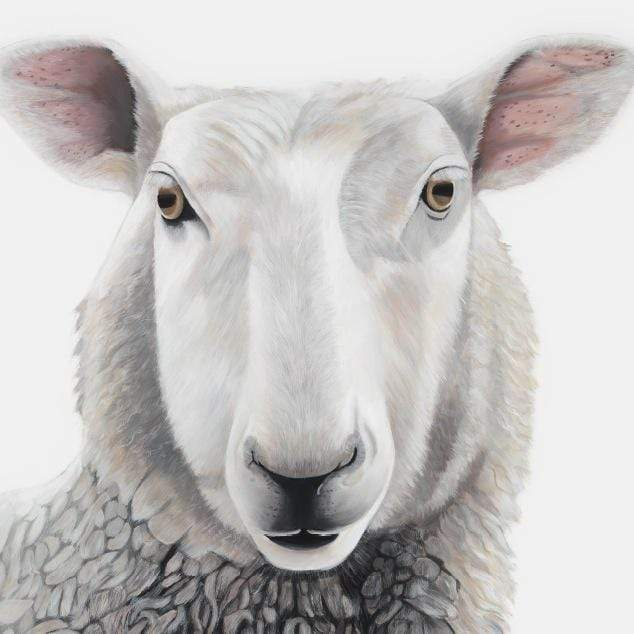 Lester Sheep Art Print by Margaret Petchell