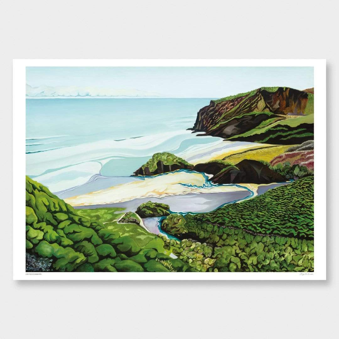 Low Tide at Anawhata Art Print by Guy Harkness