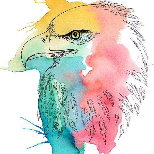 Colour Me Eagle Art Print by Makus Art