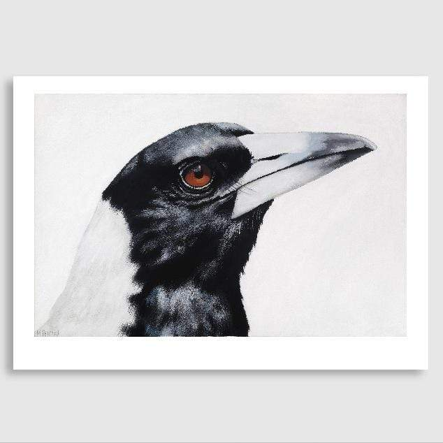 Maycee Magpie Art Print by Margaret Petchell