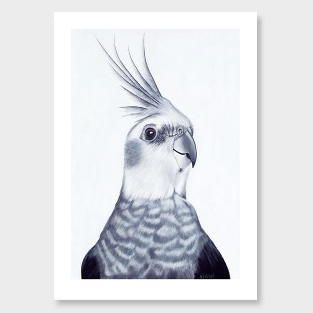 Mr Perkins Cockatiel Art Print by Margaret Petchell