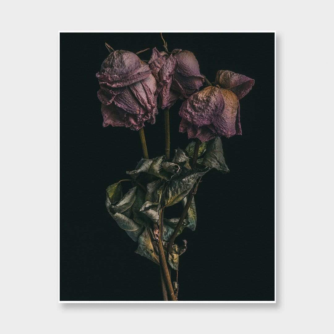 No. 10 Photographic Print by Maegan McDowell