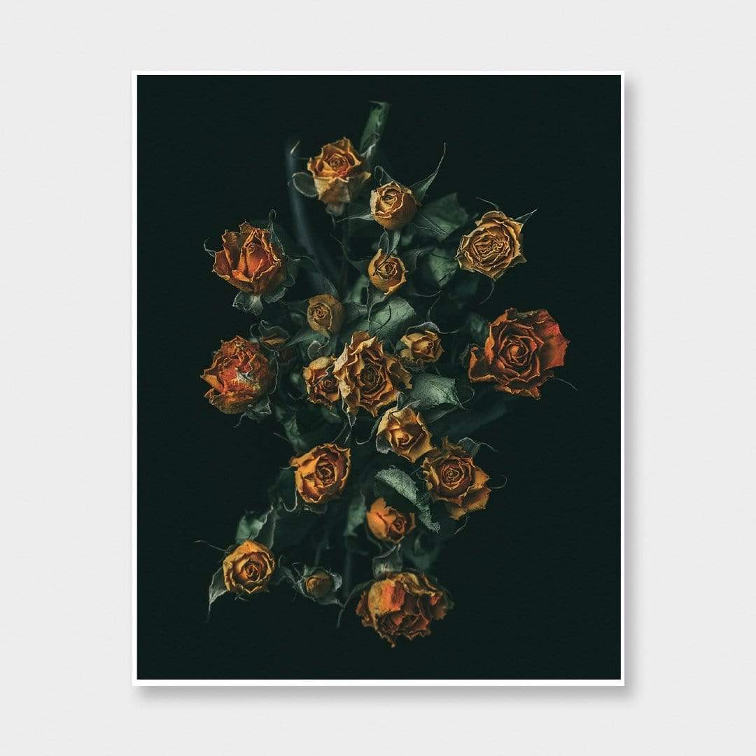 No. 11 Photographic Print by Maegan McDowell