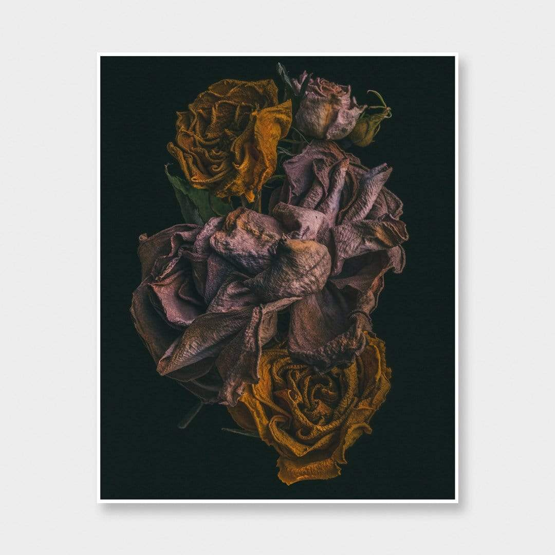 No. 7 Photographic Print by Maegan McDowell