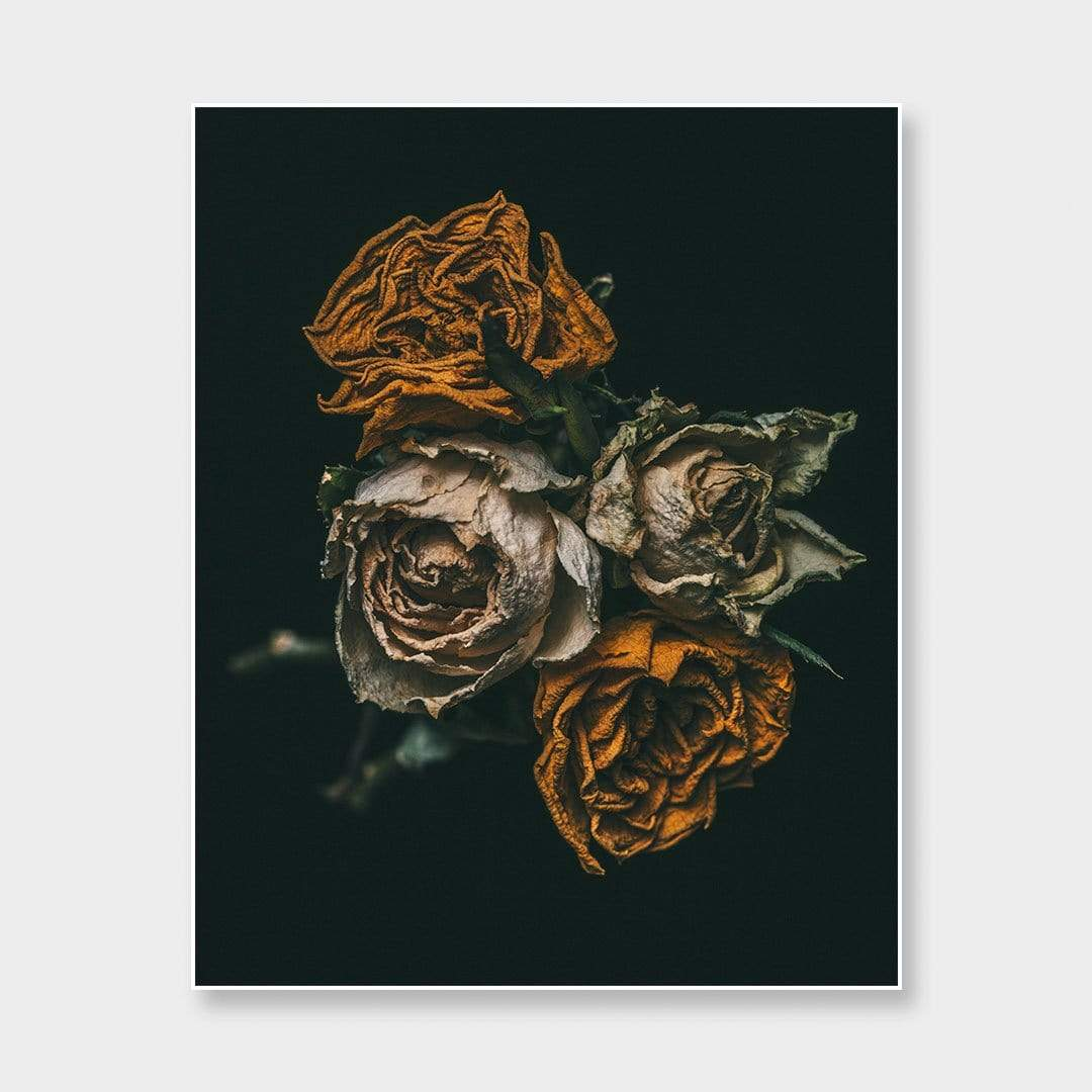 No. 6 Photographic Print by Maegan McDowell