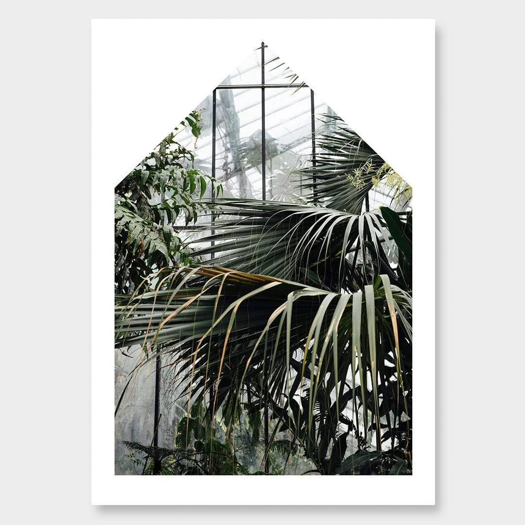 Palm House I Photographic Print by Amy Wybrow