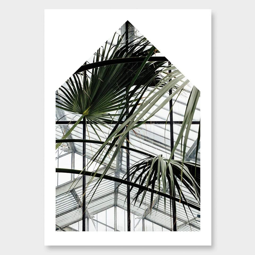 Palm House II Photographic Print by Amy Wybrow