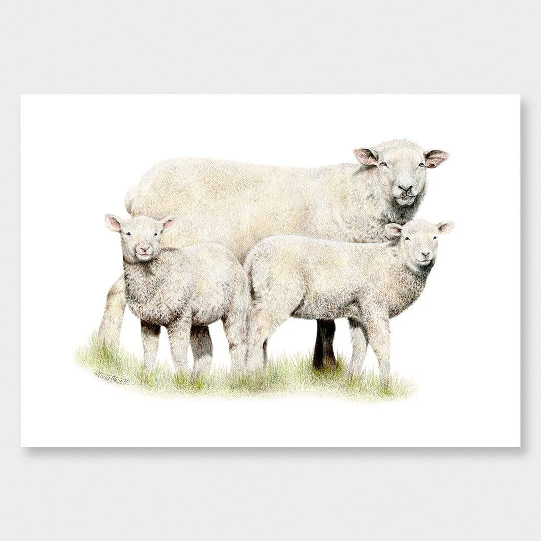 Sheep Family Art Print by Olivia Bezett
