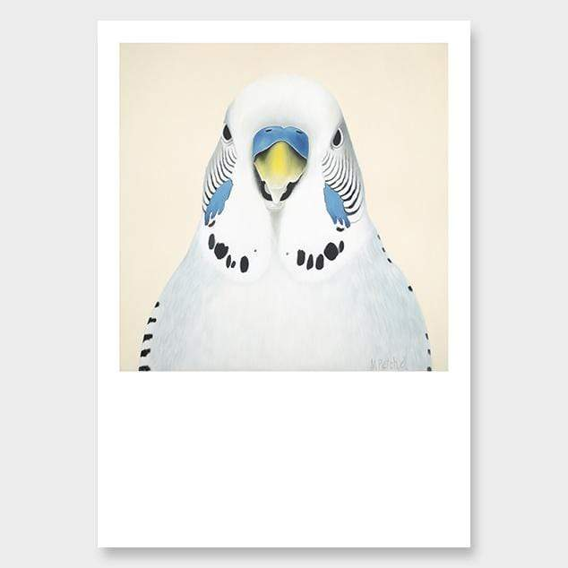Sid Budgie Art Print by Margaret Petchell