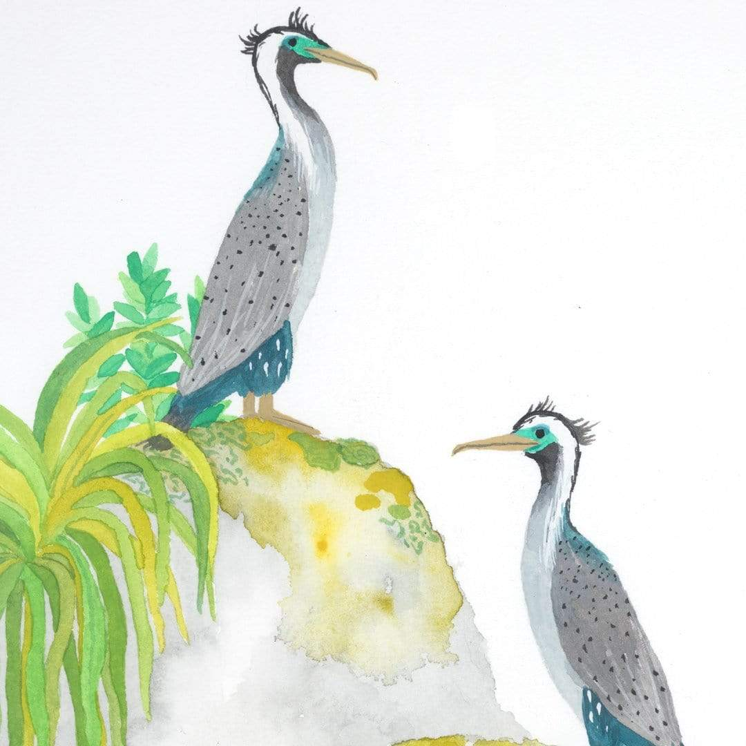 Spotted Shags Original Painting by Emma Huia Lovegrove